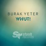 Burak Yeter - Whut! (Cover Art)